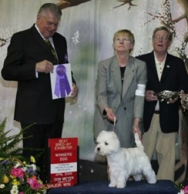 sp2009winnersdog 1